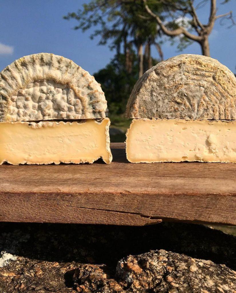 Imagem de um queijo cortado ao meio